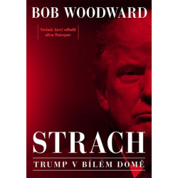 Strach - Trump v Bílém domě...