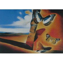 Salvador Dalí - Luxusní...