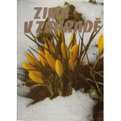 Zima v zahradě - kolektiv...