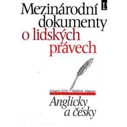 Vladimír Adamus:...
